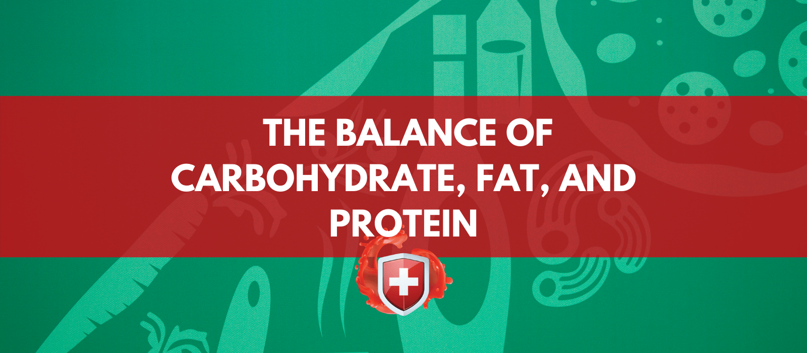What is the Right Balance of Carbohydrate, Fat, and Protein